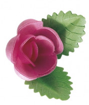 Waffel-Rose mit Blättern, rosa, 50mm, 100 Stück