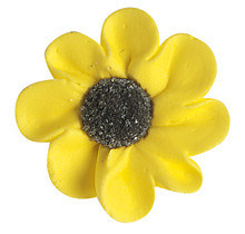 Zucker-Margeriten, gelb, groß