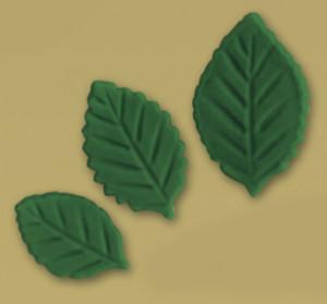 Tragant-Blätter, sortiert