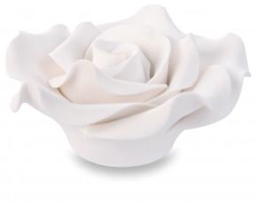 Zucker-Rosen, groß, weiss, 50mm, 18 Stück